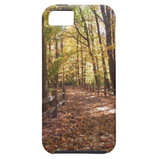 Fall walk in the park and changing colors iPhone 5 cover