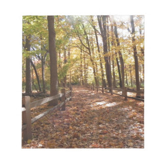 Fall walk in the park and changing colors notepads