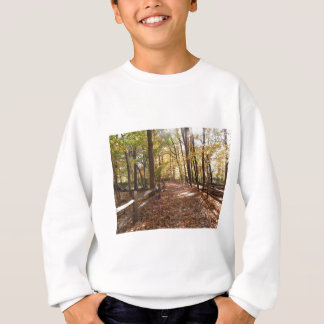 Fall walk in the park and changing colors sweatshirt