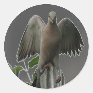 Fallen Angel Dove Sticker