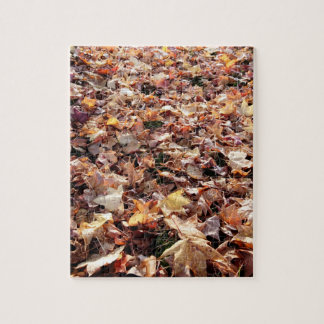 Fallen Autumn Leaves - Difficult Puzzle