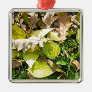 Fallen autumn leaves on green grass lawn Silver-Colored square decoration