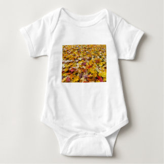 Fallen Fall Color Leaves on Parks Ground Baby Bodysuit