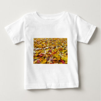 Fallen Fall Color Leaves on Parks Ground Baby T-Shirt