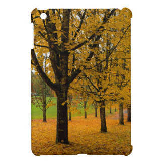 Fallen Fall Color Leaves on Parks Ground iPad Mini Cover