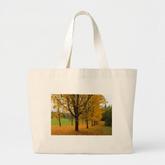 Fallen Fall Color Leaves on Parks Ground Large Tote Bag