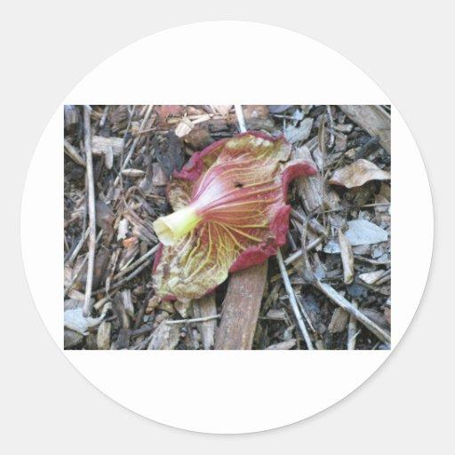 Fallen Flower Round Sticker