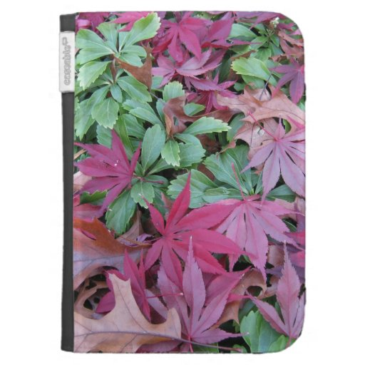 Fallen Japanese Maple leaves. Case For The Kindle