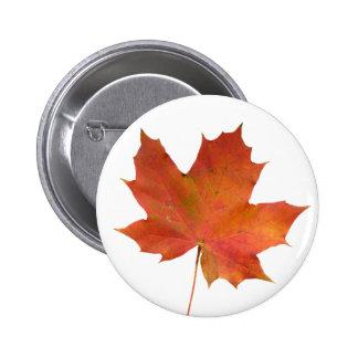 Fallen Leaf 01 Pinback Buttons