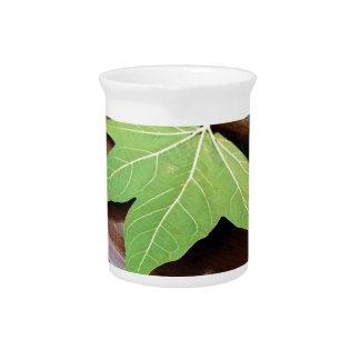 fallen leaf drink pitcher