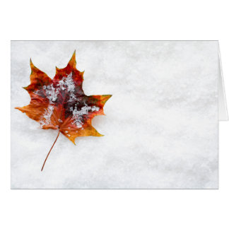 Fallen Leaf in the Snow Greeting Card