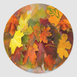FALLEN LEAVES ~ Envelope Sealers/Stickers Classic Round Sticker