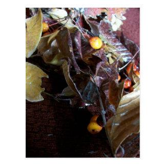 Fallen Leaves Postcard