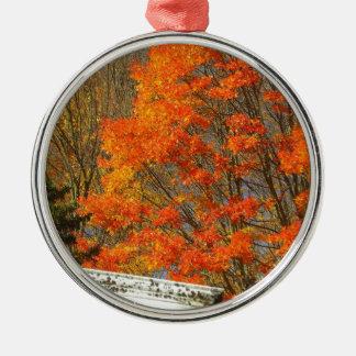 Fallen Silver-Colored Round Decoration