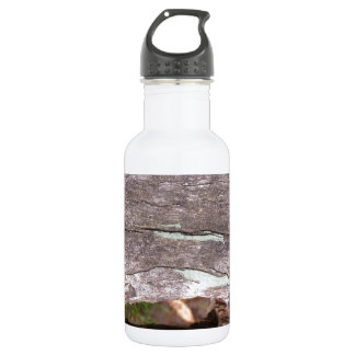 Fallen sun bleached tree with hollow point 532 ml water bottle