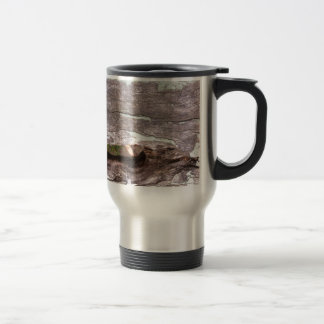 Fallen sun bleached tree with hollow point coffee mugs