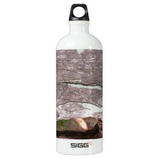 Fallen sun bleached tree with hollow point SIGG traveller 1.0L water bottle