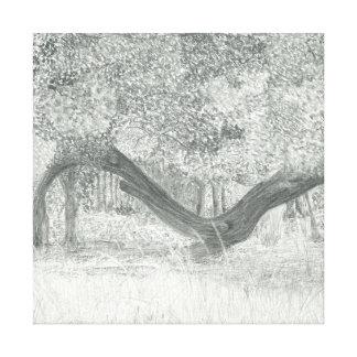 Fallen Tree Canvas Print
