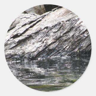 Fallen Tree in Lake Round Sticker