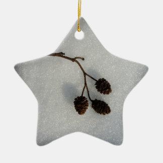 fallen twig ceramic star decoration