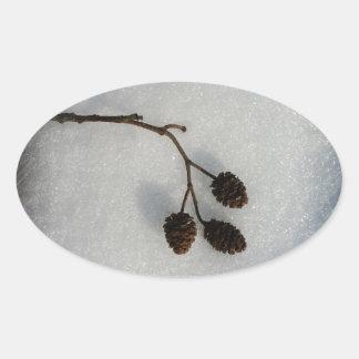 fallen twig oval sticker