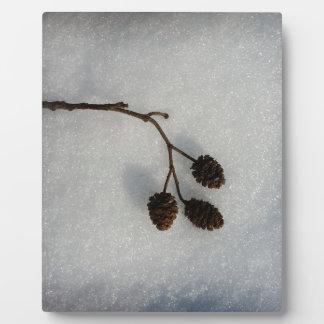 fallen twig plaque