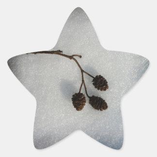 fallen twig star sticker