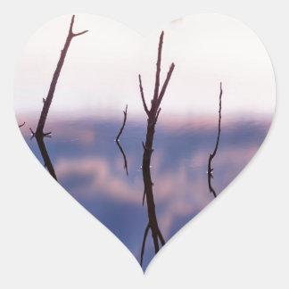 Fallen Twiggy Reflections Heart Sticker