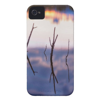 Fallen Twiggy Reflections iPhone 4 Cover