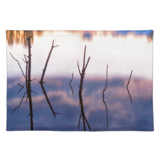 Fallen Twiggy Reflections Placemat