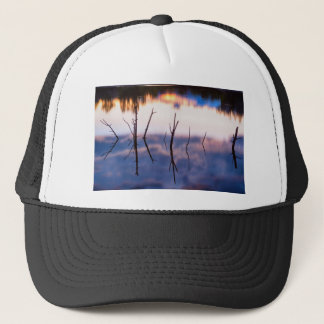 Fallen Twiggy Reflections Trucker Hat