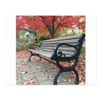 Falling Benches and Sitting Leaves Postcard
