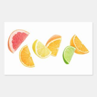 Falling citrus slices rectangular sticker