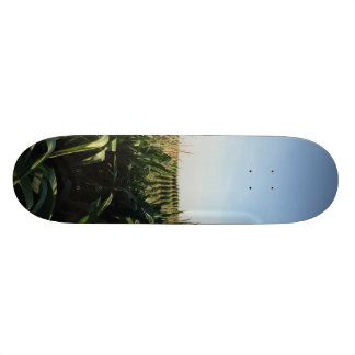 Falling into Alignment 18.1 Cm Old School Skateboard Deck