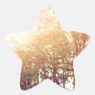 Falling into Fall Star Sticker
