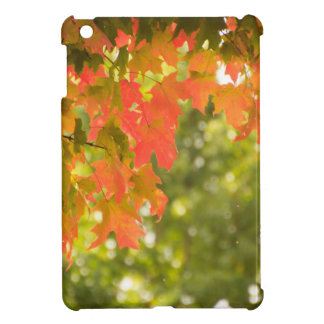 Falling iPad Mini Covers