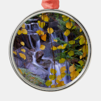 Falling Leaves Silver-Colored Round Decoration
