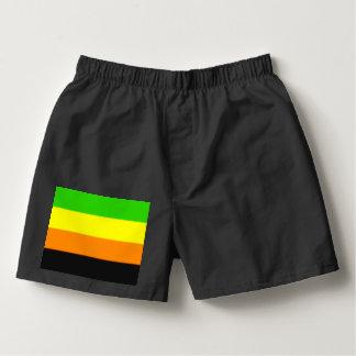 Fallln Aromantic Pride Flag Boxers