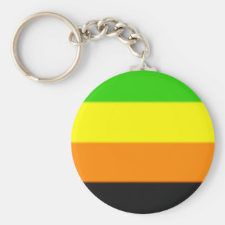 Fallln Aromantic Pride Flag Key Ring