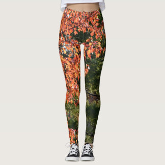 Fall's Ying Yang Leggings