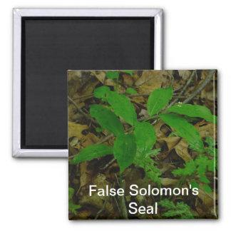 False Solomon s Seal Magnet