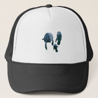 FAMILY FOR THREE TRUCKER HAT