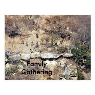 Family Gathering Postcard