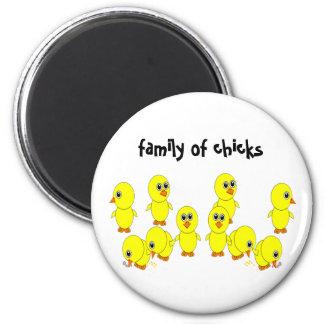 family of chicks magnet