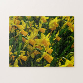 Family Of Daffodils Puzzle