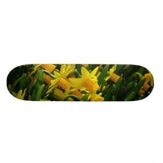 Family Of Daffodils Skateboard Decks