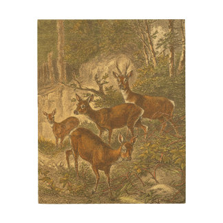 Family of Roe - Deers in a Forest Wood Wall Art