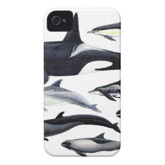 Family of the dolphins: orcas, dolphins, marsopas iPhone 4 cover