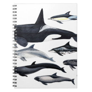 Family of the dolphins: orcas, dolphins, marsopas spiral notebook