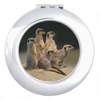 Family Portrait Compact Mirror